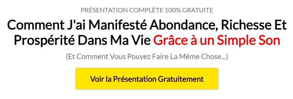 Christophe Dudin 12 minutes Abondance, Richesse Et Prospérité Dans Ma Vie Grâce à un Simple Son