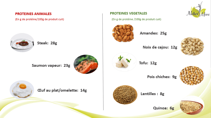 proeteines animales vs vegetales 1